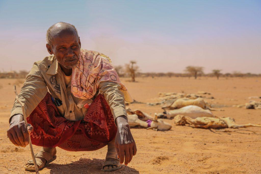 Ein Mann aus Somaila kauert verzweifelt vor den Kadavern seiner verendeten Tiere